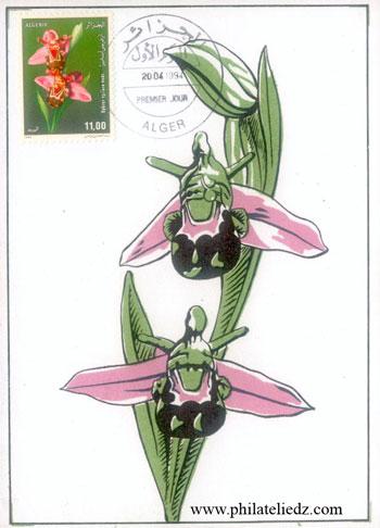 Carte  Maximum ou pas ? Fleur1