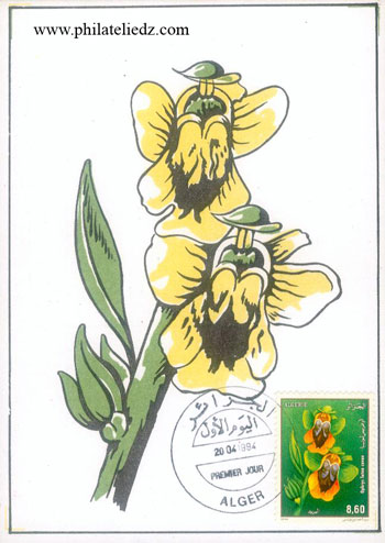 Carte  Maximum ou pas ? Fleur3